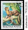 HUNGARY - CIRCA 1979: A stamp printed in Hungary shows Martes, curca 1979 - stock photo