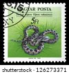 """HUNGARY - CIRCA 1989: A stamp printed in Hungary shows Orsinis Viper (Vipera rakosiensis), with the same inscriptions, from the series """"Endangered Reptiles"""", circa 1989. - stock photo"""