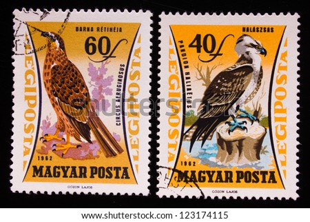 HUNGARY - CIRCA 1962: A stamp printed in Hungary shows two different kinds of wild birds,circa 1962 - stock photo