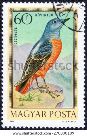 HUNGARY - CIRCA 1973: Postage stamp printed in Hungary showing series of images of forest birds, circa 1973    - stock photo