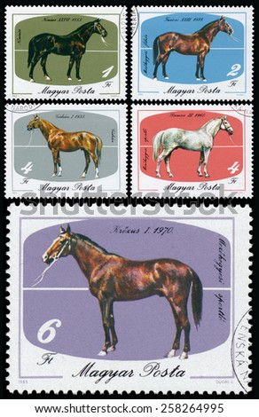 HUNGARY - CIRCA 1985: Set of stamps printed in Hungary shows The 200th Anniversary of Horse Keeping in Mezohegyes, circa 1985 - stock photo