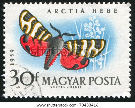 HUNGARY - CIRCA 1959: stamp printed by Hungary, shows butterfly, circa 1959