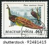 HUNGARY - CIRCA 1977: stamp printed by Hungary, shows Peacock, circa 1977 - stock photo