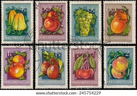 "HUNGARY - CIRCA 1954: Stamps printed in Hungary show Peppers, Grapes, Apricots, Tomatoes, Apples, Peaches, Cherry, Plums, from the series ""National Agricultural Fair"", circa 1954  - stock photo"