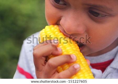 Hungry indian boy ( kid ) eating sweet corn ( healthy food ). This boy's photo is a close-up showing the person eating boiled maize vegetable on a summer day - stock photo