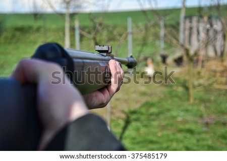 Hunter shooting wild hens, Hunter aim his target,  Jaeger aim on his hunting ground, Poacher shooting, Hunter aim with rifle, gun, weapon, air gun, - stock photo