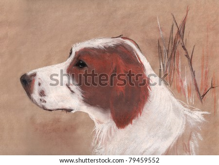 hunting dog freehand pastel drawing - stock photo