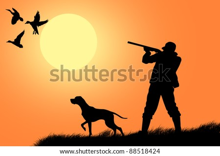 Hunting dog with hunter in the background - stock photo