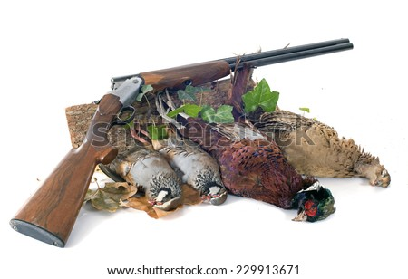 hunting games in front of white background - stock photo