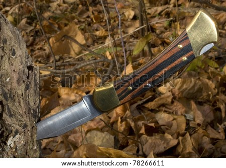 hunting knife that's in a log in the fall