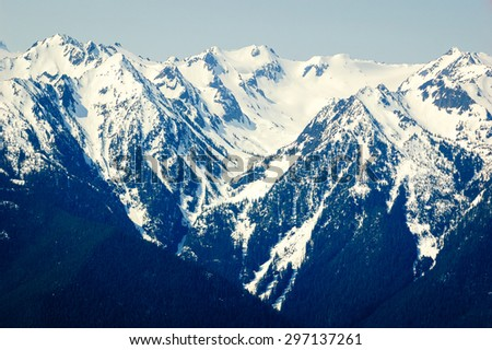 Hurricane Ridge at Olympic National Park - stock photo