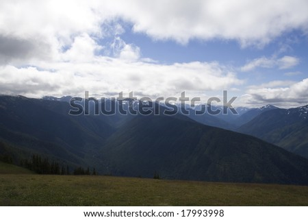 Hurricane Ridge in Olympic National Park in Summer - stock photo
