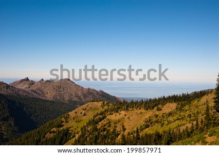 Hurricane Ridge in the Olympic Peninsula
