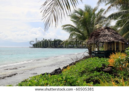 Hut, green grass and palm trees on the beach in Samoa