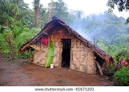 Hut in the Rainforest of Espiritu Santo, Vanuatu - stock photo