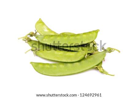 Hyacinth bean - stock photo