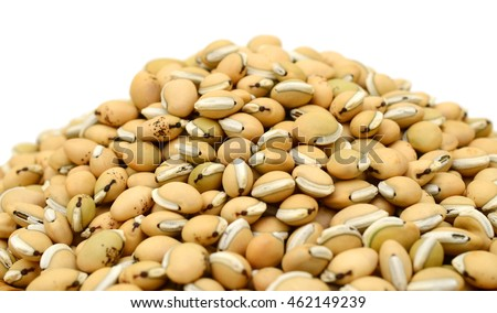 Hyacinth Beans isolated on white background