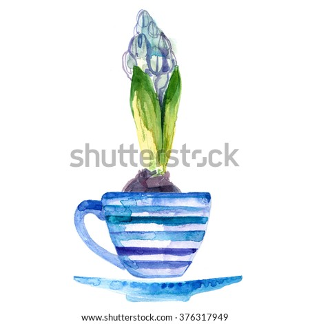 Hyacinth. Spring flower in a cup painted with watercolors on white background. Bulbous flower. Spring decor. - stock photo