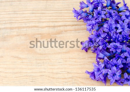 Hyacinths on the wooden background, selective focus - stock photo