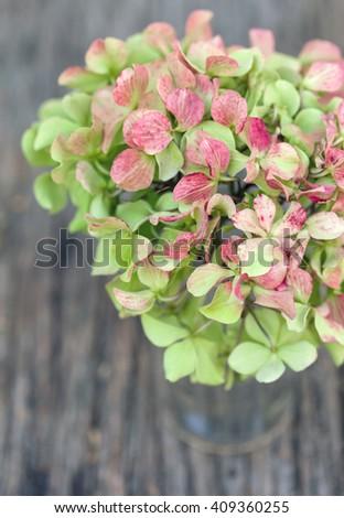 Hydrangea in vase on wooden board - stock photo