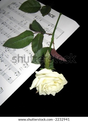 Hymn music and white rose