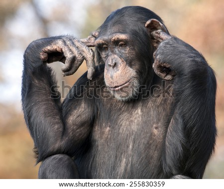 I can't hear you - stock photo