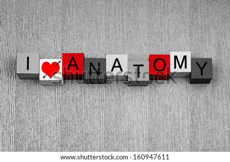 I Love Anatomy - medical health care sign, education or for valentines day!