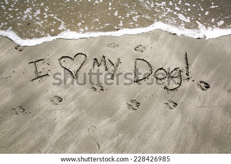 I love my dog, a message written in the sand at the beach.  - stock photo