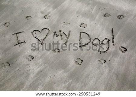 I love my dog written in the black sand; dog paw prints  in black sandy beach  - stock photo