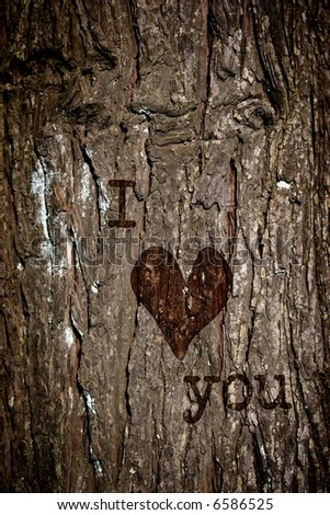 I love You sign engraving in the bark of a tree - stock photo