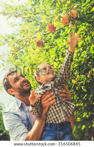 I want that apple! Cheerful little boy stretching out hand to apple while his father picking him up  - stock photo