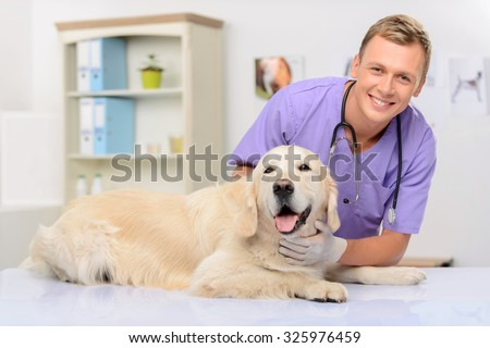 I will cure you. Cheerful handsome delighted vivacious  vet expressing gladness and holding dog while going to examine it - stock photo