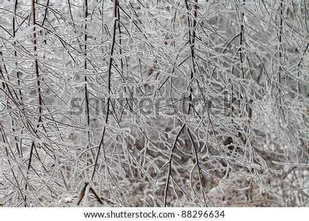 ice - stock photo
