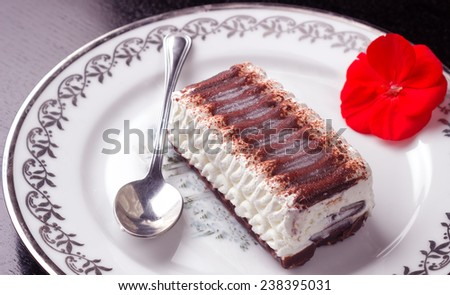 Ice cream cake with chocolate and whipped Cream - stock photo