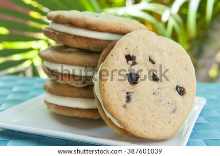 Ice cream Sandwich - chocolate chip cookie with vanilla ice cream with tropical background