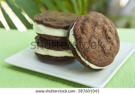 Ice cream Sandwich - double chocolate chip cookie with mint ice cream with tropical background - stock photo