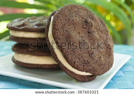 Ice cream Sandwich - double chocolate chip cookie with peanut butter ice cream with tropical background - stock photo