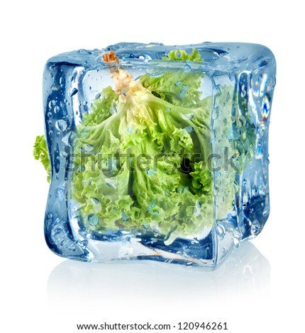 Ice cube and lettuce isolated on a white background