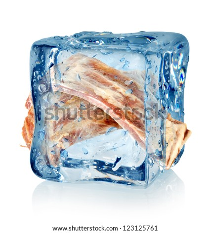Ice cube and ribs isolated on a white background
