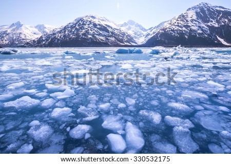 Ice melting in a lake and snow-capped mountains in Alaska. Global warming. - stock photo