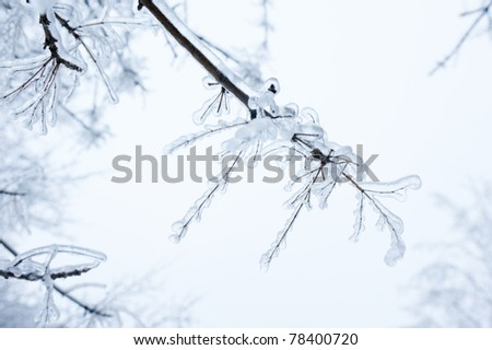 Ice winter in Russia - stock photo