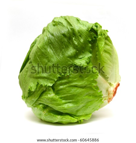 Iceberg lettuce isolated on white - stock photo