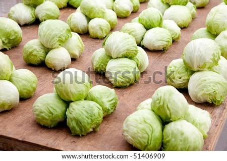 Iceberg lettuce on a market place. Soft diffused lighting a bit from behind. Soft reflexes. - stock photo