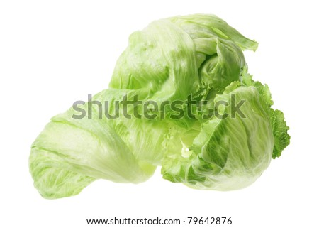 Iceberg Lettuce on White Background - stock photo