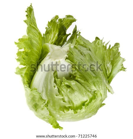 iceberg lettuce salad isolated on white - stock photo
