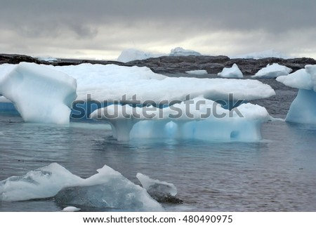 Icebergs floating in the frigid waters of Antarctica