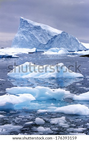 Icebergs in Paradise Harbor, Antarctica - stock photo