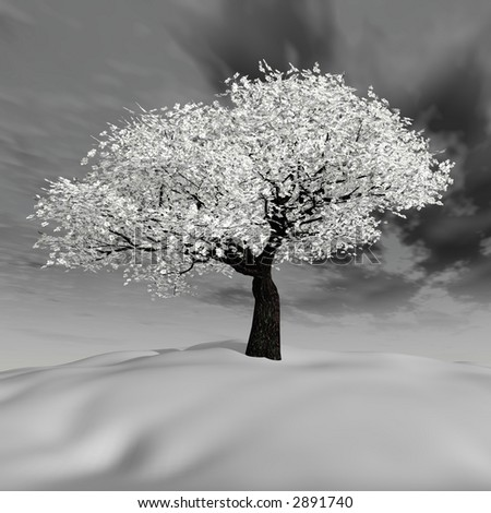 iced tree in a cold winter - stock photo