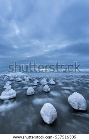 Iced wood in sea