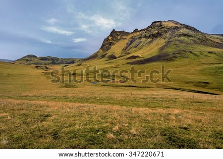 Iceland, Beautiful arctic landscape, wild field with bright yellow grass and moss  - stock photo